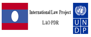 International Law Project